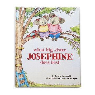 Personalized What Big Sister Does Best Book