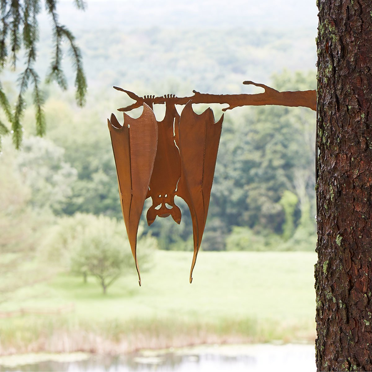 bat on a branch 1 thumbnail