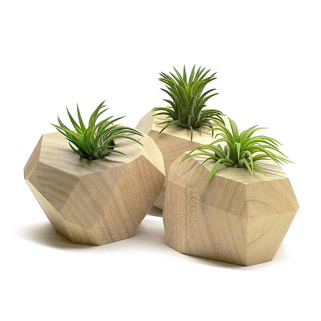 Faceted Wooden Planters - Set of 3