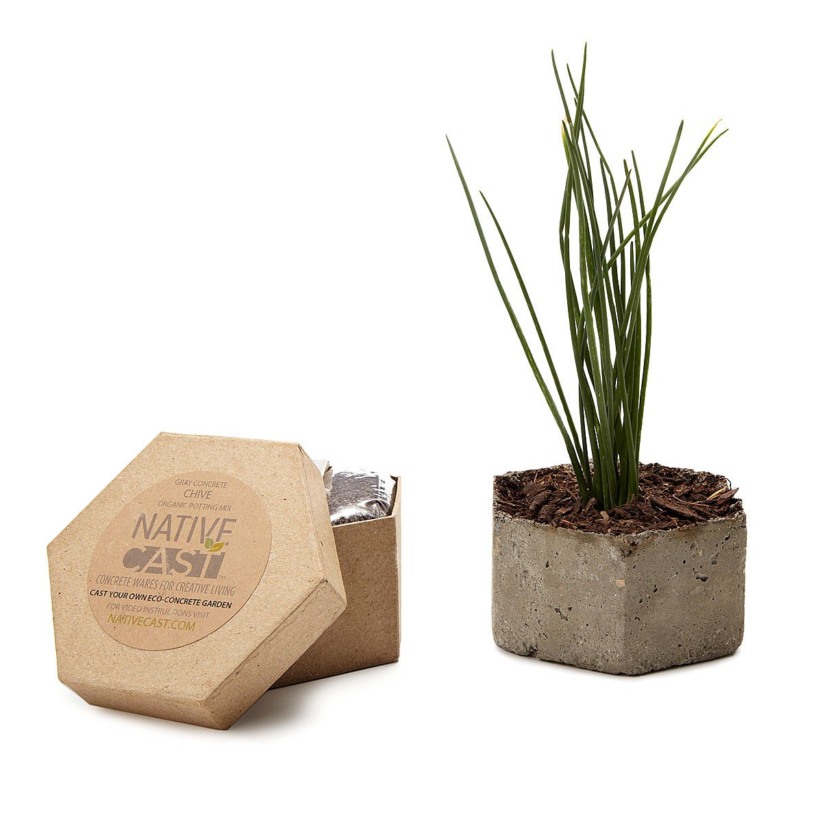 diy hexagonal chive planter kit 1 thumbnail