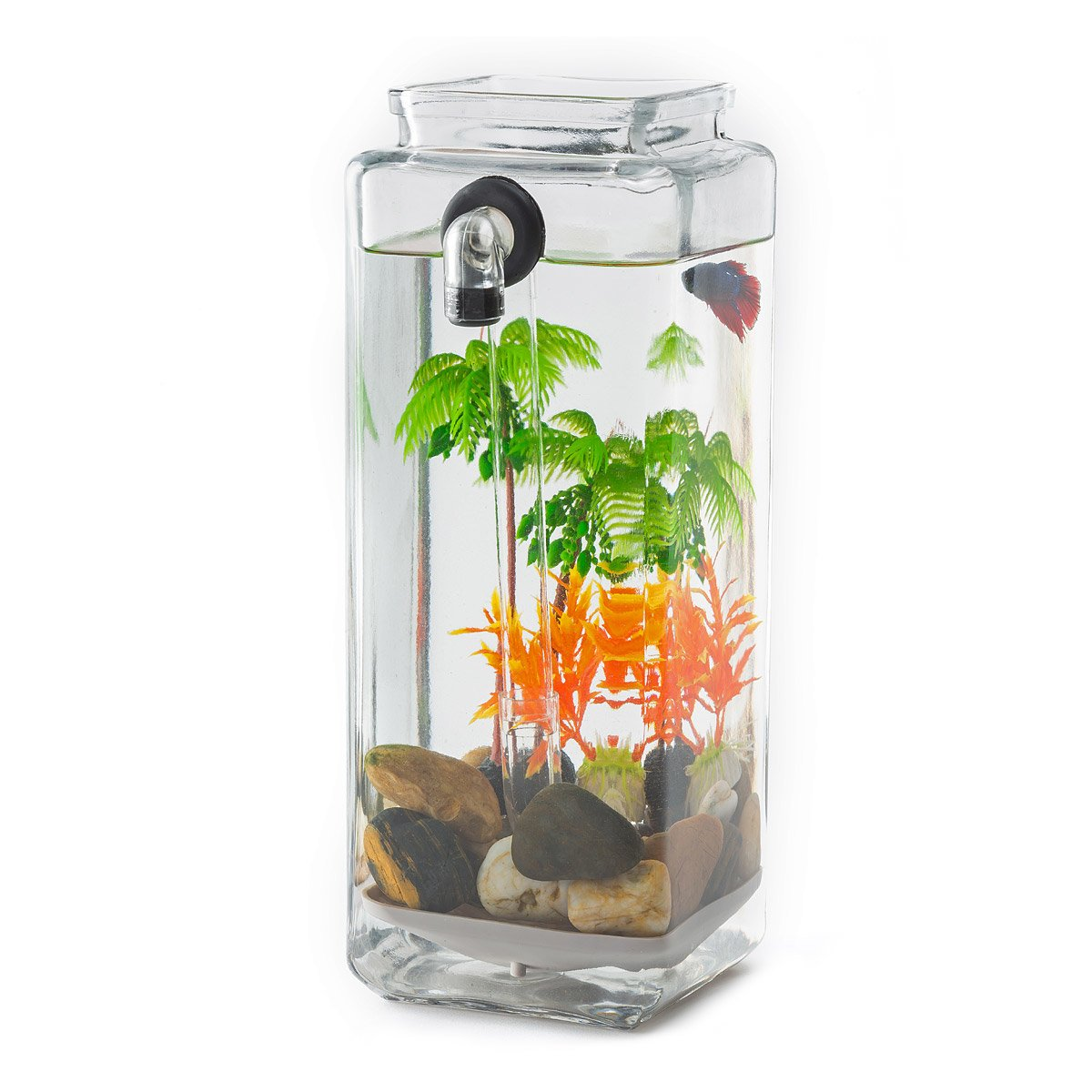 Fish Tank No Clean Aquarium Acrylic Fish Tank Freshwater No Filter