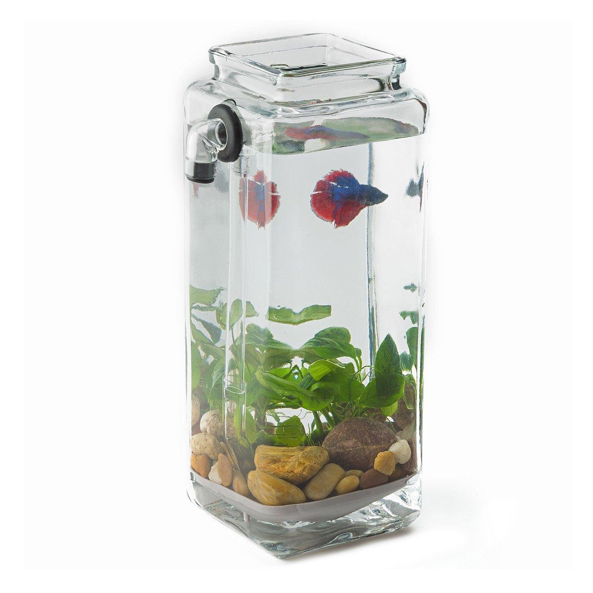 No Clean Aquarium acrylic fish tank, freshwater, no filter ...