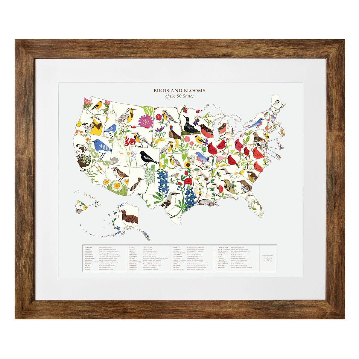 Birds and Blooms Art US Map geography state bird state