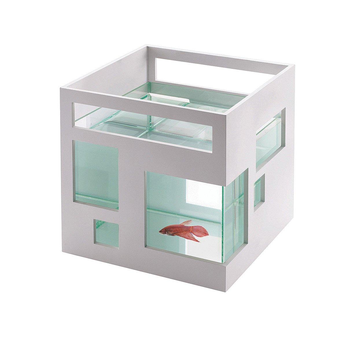 Fish Condo | fish tank, modern | UncommonGoods