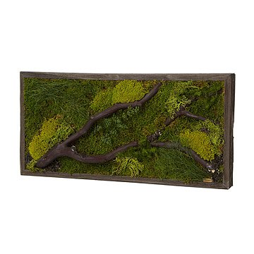 Woodlands Green Wall Art