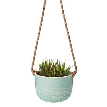 Mint Carved Hanging Planter