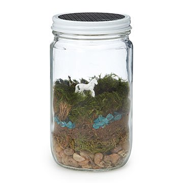 DIY Unicorn Terrarium Kit