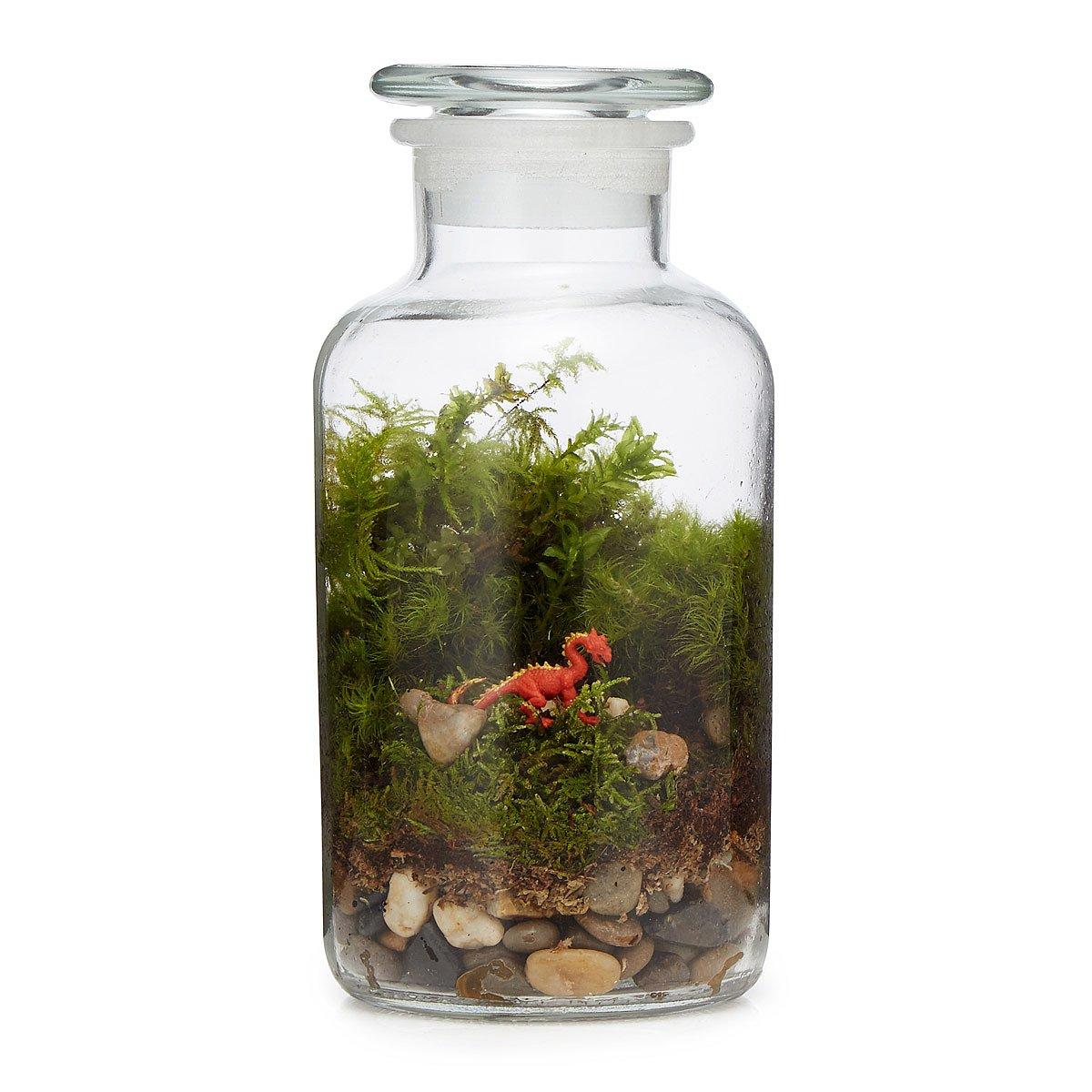Terrariums Planters UncommonGoods - Amazing diy non living terrarium