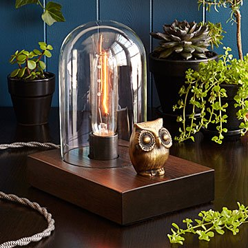 Mr Owl Touch Lamp