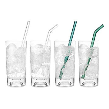Glass Straws- Set of 2