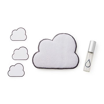Dust Cloud Screen Cleaning Set