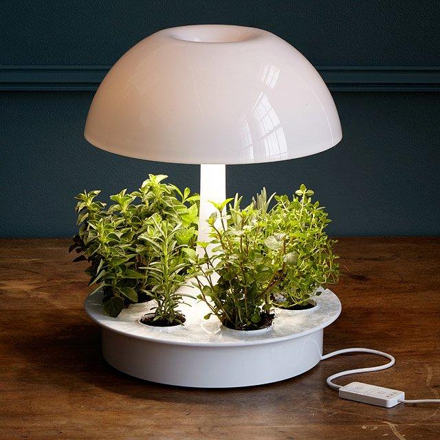 Superb Ambienta Grow Lamp