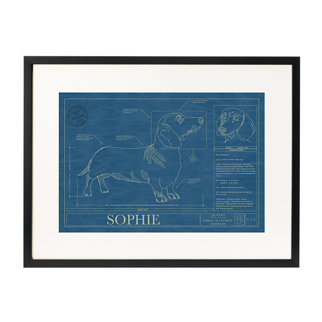 Personalized Dog Blueprints