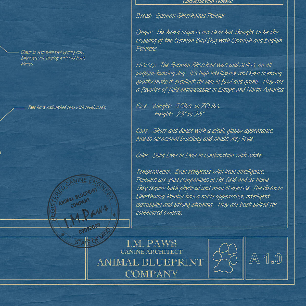 Personalized dog blueprints gifts for dog lovers uncommongoods personalized dog blueprints 4 thumbnail malvernweather