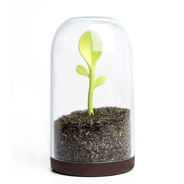 Sprouting Scoop Jar