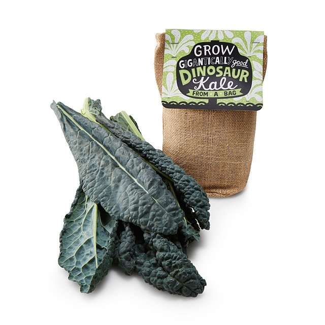 Kale in a Bag Grow Kit