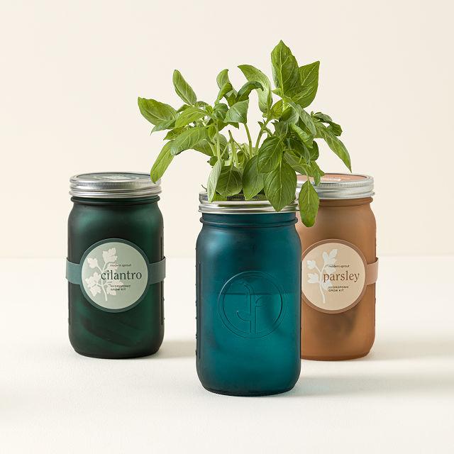 Exceptionnel Mason Jar Indoor Herb Garden
