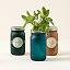 Buy this Mason Jar Indoor Herb Garden while supplies last
