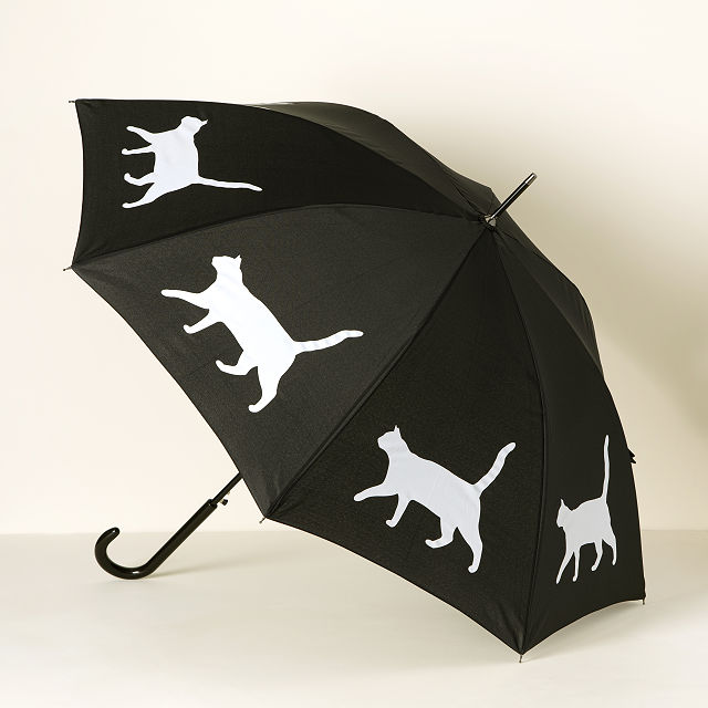Cat In The Rain Umbrella