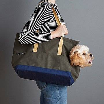 Canvas Pet Travel Tote