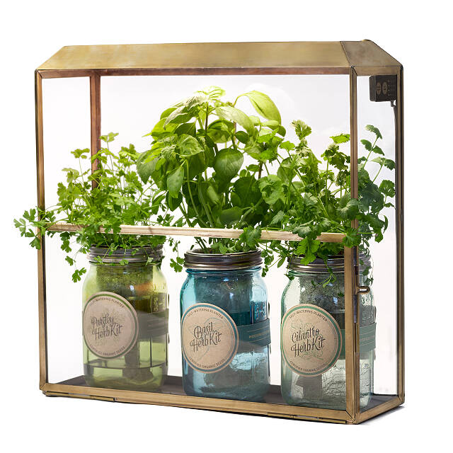 Antiqued Brass Growhouse