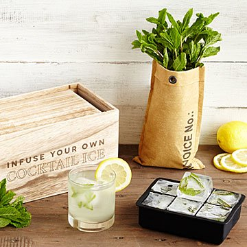 Grow & Infuse Cocktail Ice Kit