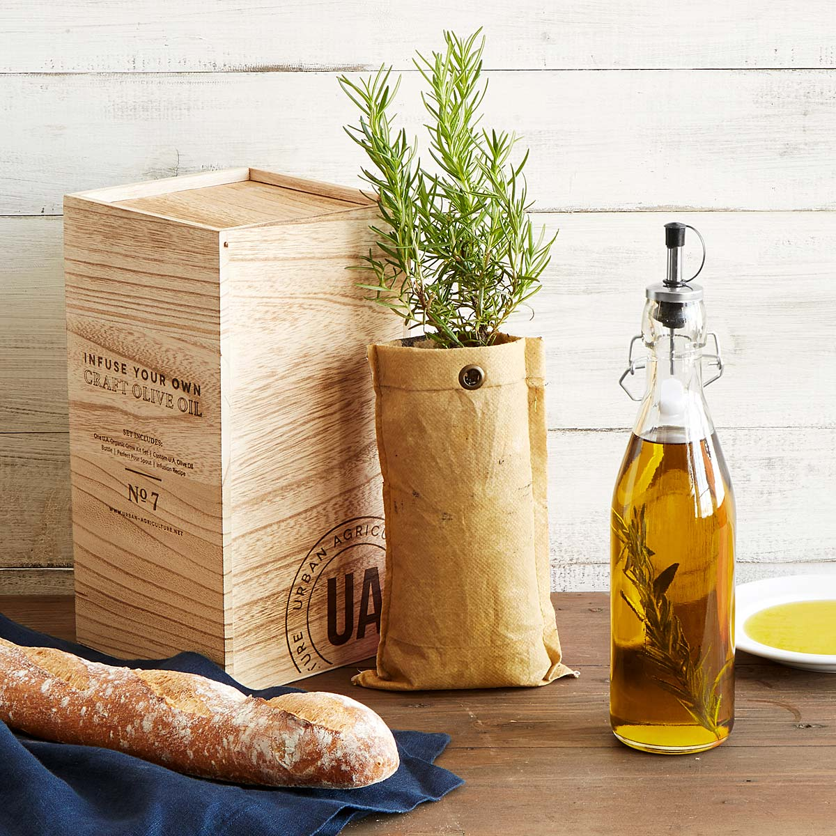grow-infuse-olive-oil-kit