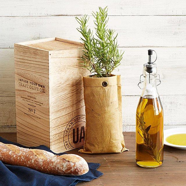 Grow u0026 Infuse Olive Oil Kit & Grow u0026 Infuse Olive Oil Kit | Unique Foodie Gifts | UncommonGoods