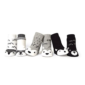 Little Adventurer Socks- Set of 6
