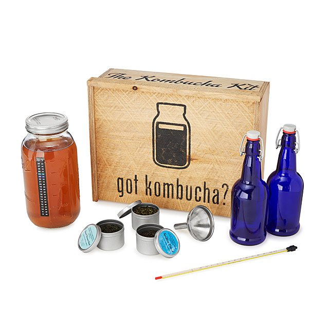 Brew Your Own Kombucha Kit