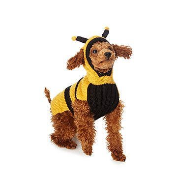 Bumble Bee Pet Sweater