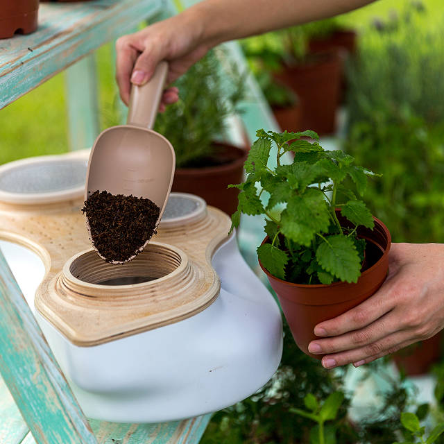 Living Composter