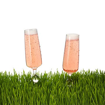 Outdoor Champagne Glasses - Set of 2