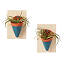 Air Plant Wall Sconces 4 thumbnail