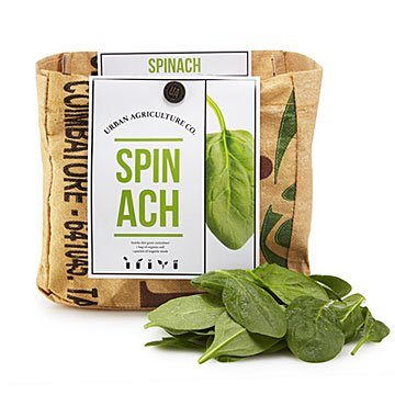 Spinach Grow Kit