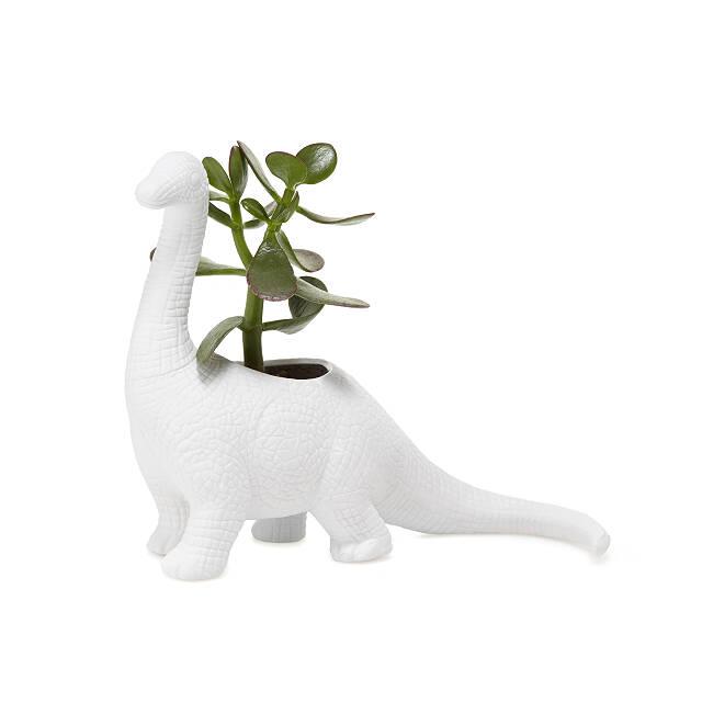 Porcelain Dinosaur Planters Dinosaur Gifts Unique Planter Succulent Planter Uncommon Goods