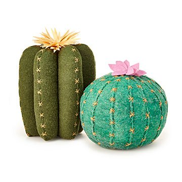 Cactus Bloom Throw Pillows