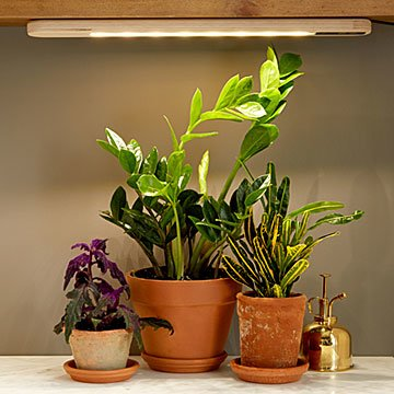 Hang Anywhere Grow Light