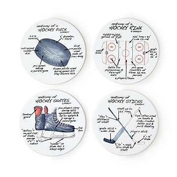 Anatomy of Sports Coasters