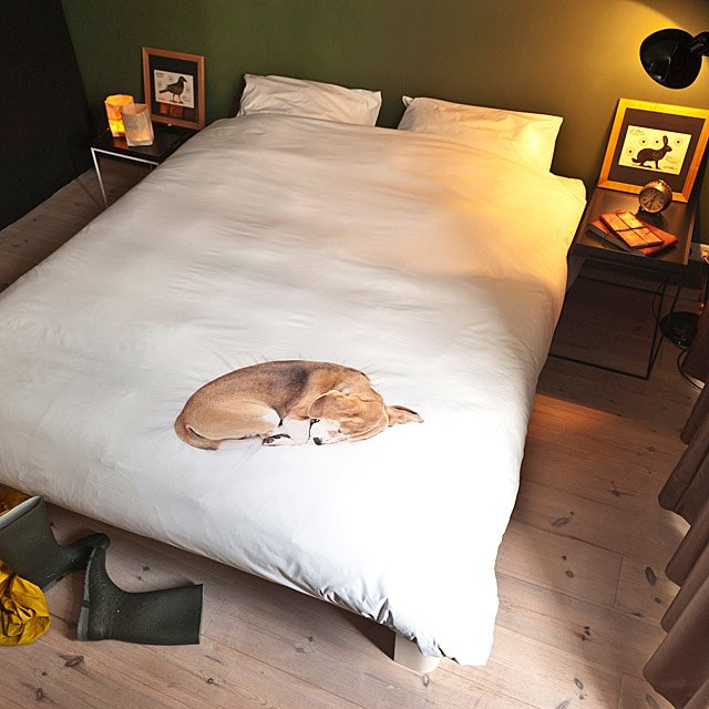 Sleepy Dog Duvet & Pillowcase Set