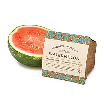 Baby Watermelon Grow Kit