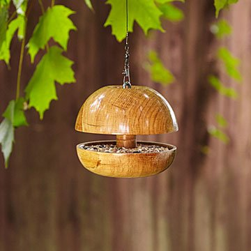 Birds-Only Bird Feeder