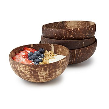 Reusable Coconut Shell Bowls
