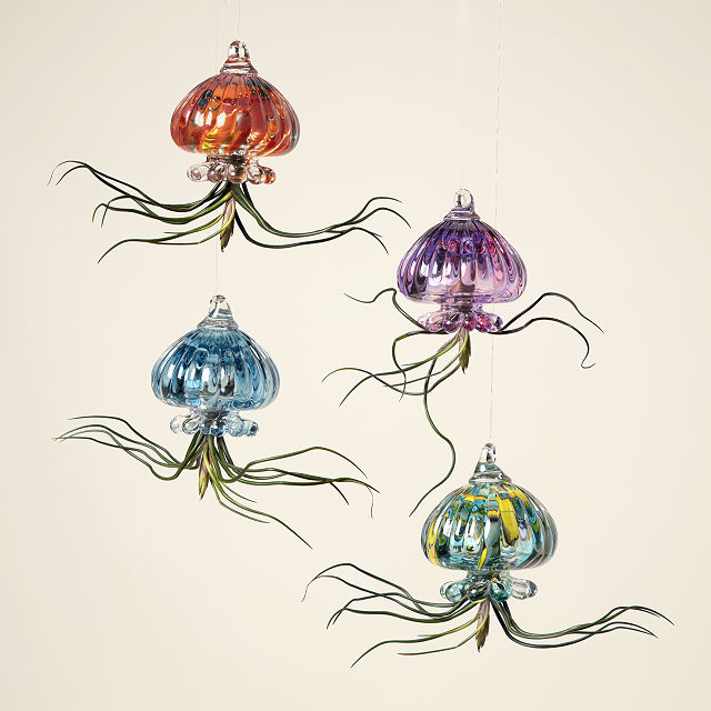 Jellyfish Air Planter