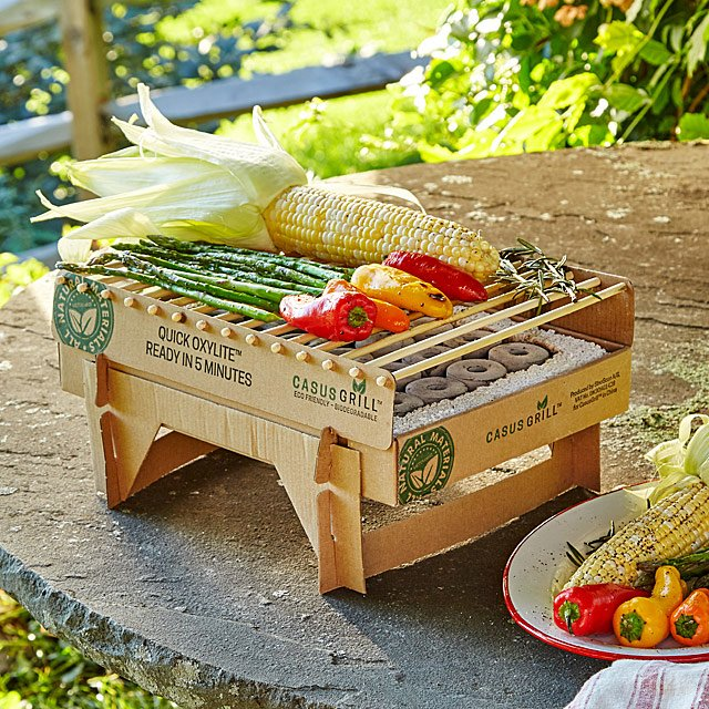 Eco-Friendly Instant Grill