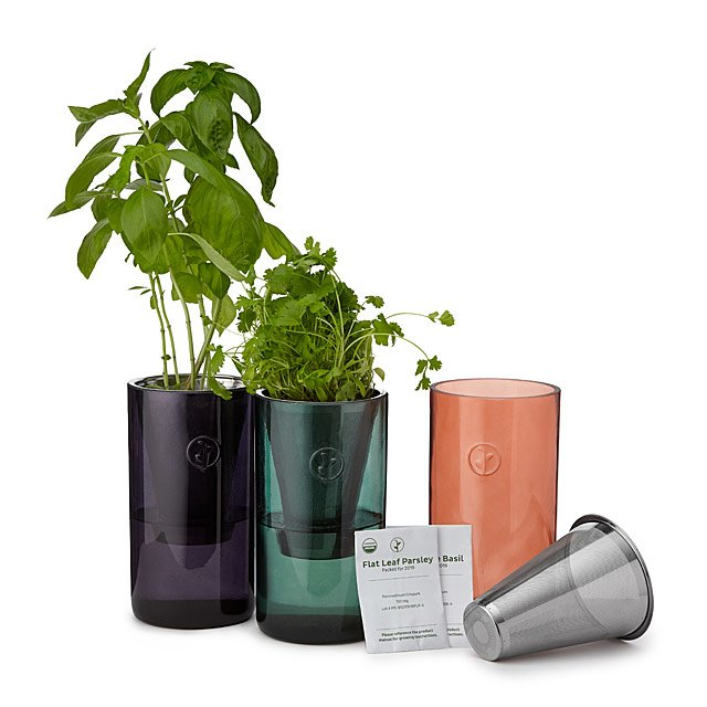 Windowsill Garden Tumblers