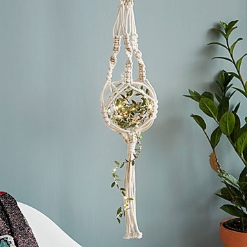 Macrame Fairy Light Plant