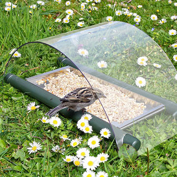 Archway Ground Bird Feeder