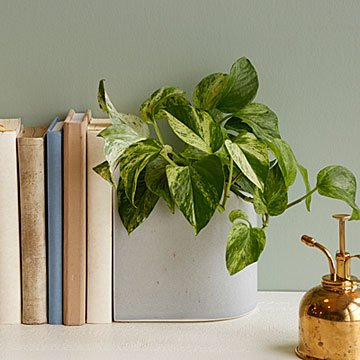Ceramic Planter Bookend