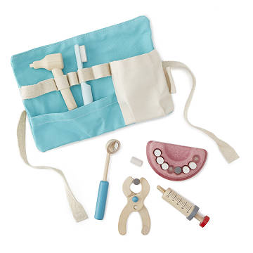 Little Dentist Set